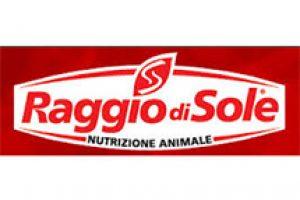 LOGO RAGGIO SOLE